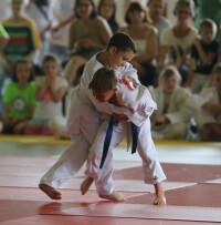 440_0008_8142298_mels31_judo_thema.jpg