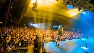 Festivals in Wiesen Musikfestival