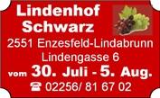 440_0011_1512574_v2_581220_1_1_lindenhof_schwarz.jpg