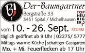 440_0011_1518892_v4_588029_1_1_karin_baumgartner.jpg