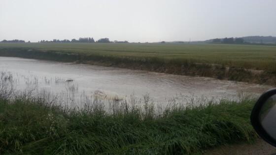 Hochwasser Maiersch