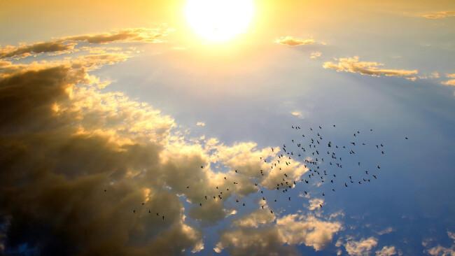 Sommer Sonne Symbolbild