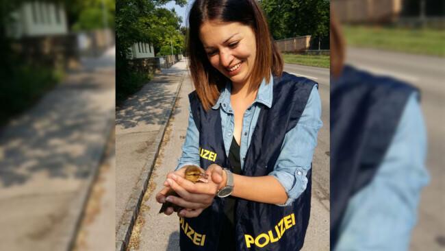 Unbenannt- polizei