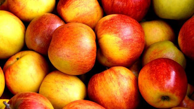 Apfel Äpfel Symbolbild