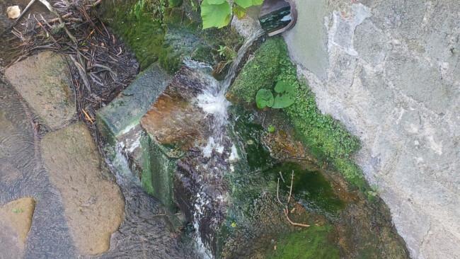 440_0008_7315452_bad29af_schwefelwasser.jpg