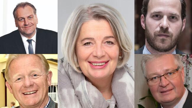 Andreas Kollross (SPÖ),Eva Mückstein (Grüne),Niki Scherak (NEOS),Peter Gerstner (FPÖ) undChristoph Kainz (ÖVP)