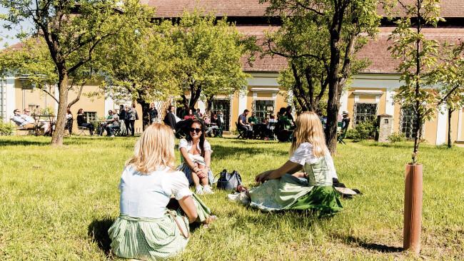 Bezirk Krems - ÖTW: Tour de Vin als erste Chance zum Weinkosten