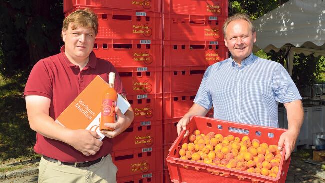 Harald Aufreiter (links) und Gerhard Tastl von der Wachauer Marillen-Genossenschaft