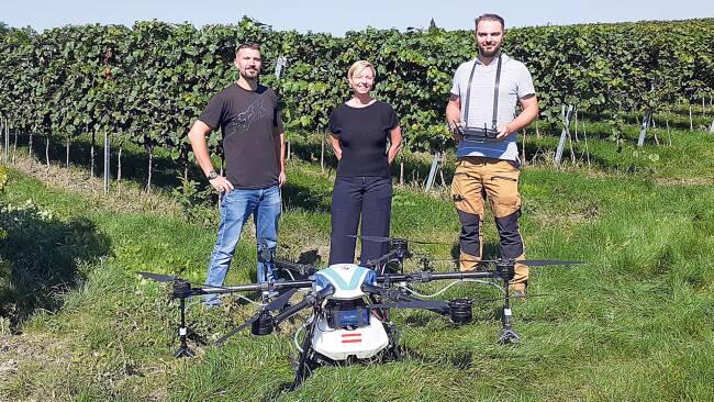 Drohne Weingarten
