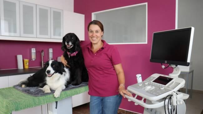 Von Natascha Ille - Neue Tierarztpraxis in Purkersdorf eröffnet