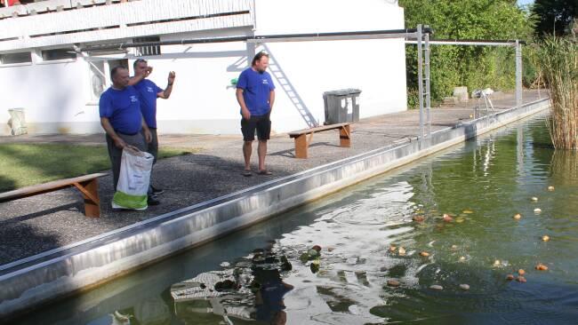 Fischereiverein Dürnkrut