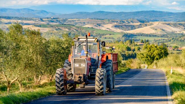 Traktor and Symbolbild