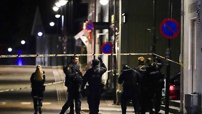 Die Polizei in Kongsberg fasste den Täter