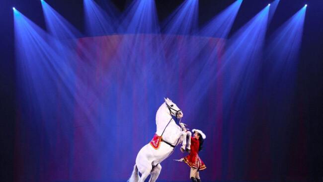Magische Begegnungen gibt es bei der neuen Show von Apassionata